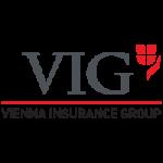 VIG. Our clients. Transition Technologies PSC