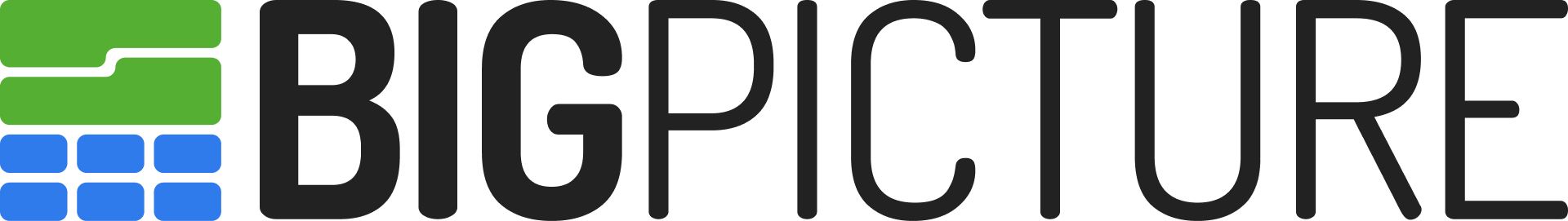 BigPicture logo
